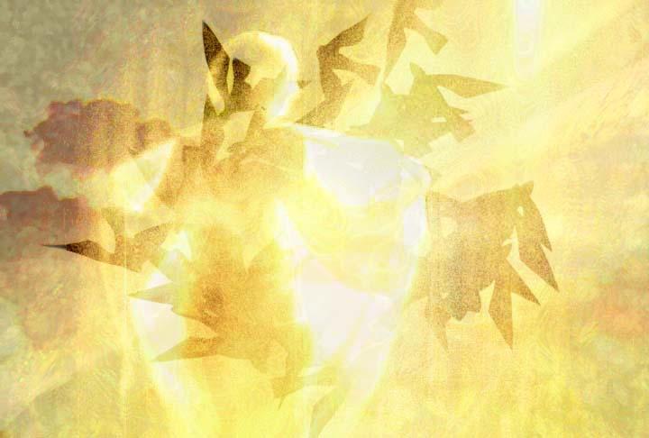 Bursting With Light by ElliMayhem