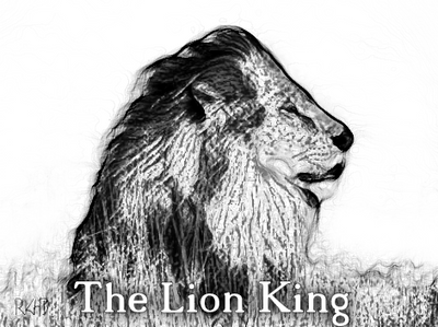 The Lion King by rickduncan56
