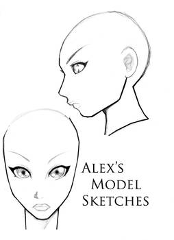 Alexs Head refference
