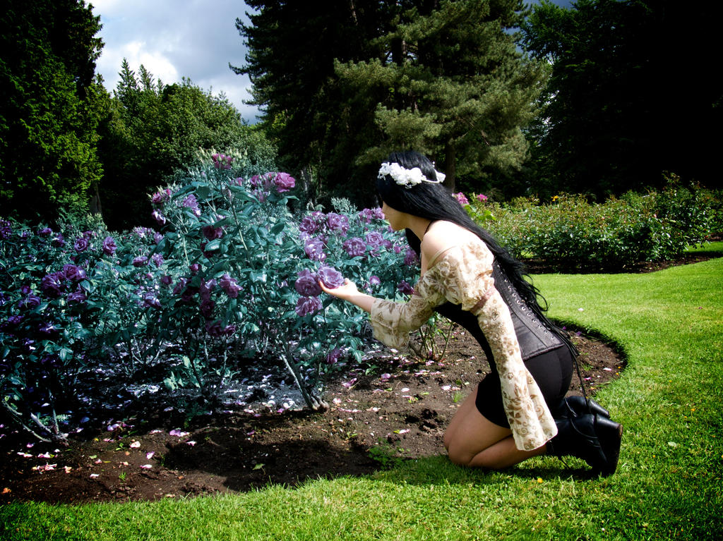 Merveilleux Gothic Garden   Forbidden Flowers By Mahafsoun ...