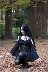 Stock - Gothic \ Fantasy - Forest Black