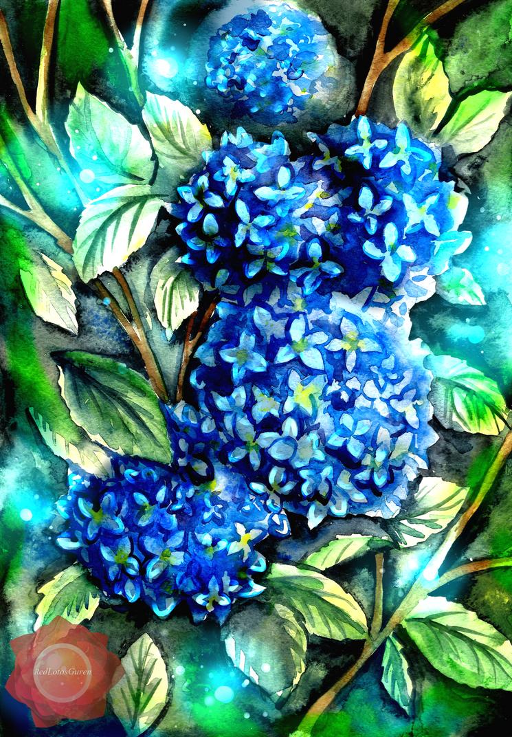 Hydrangea by RedLotosGuren