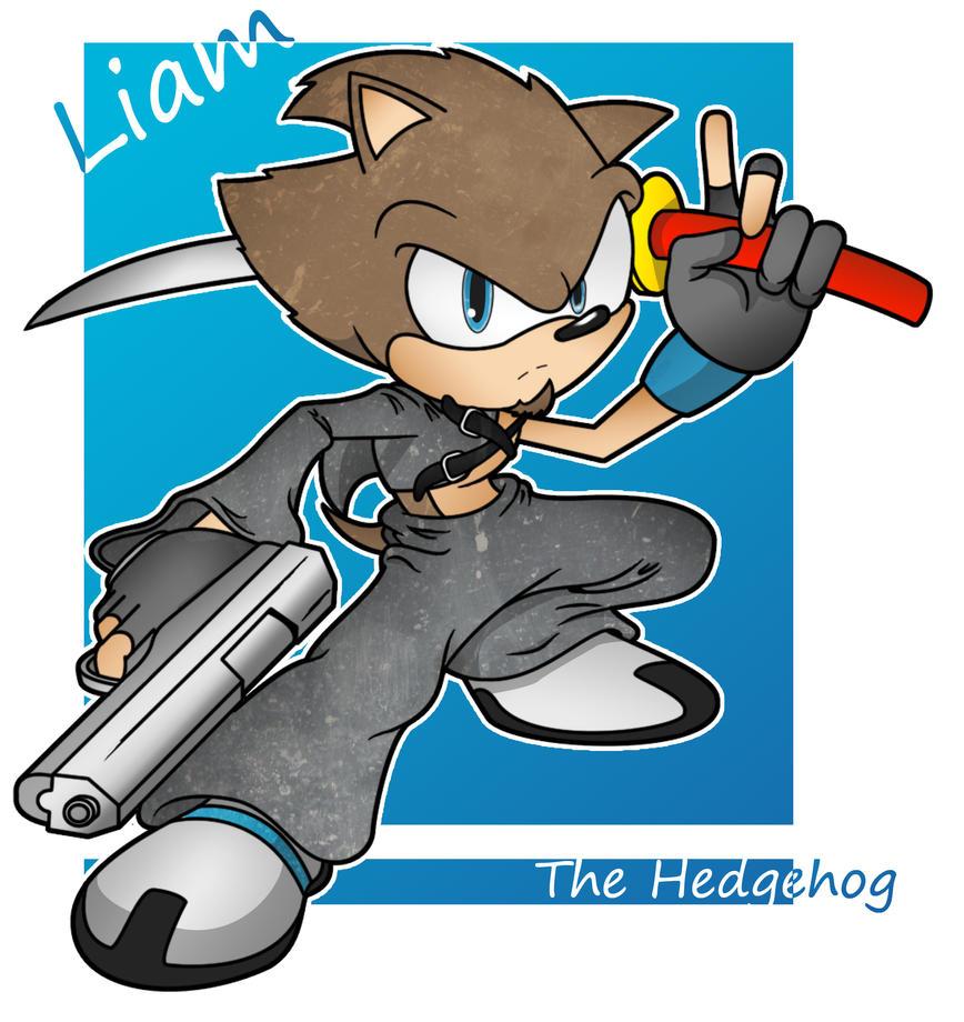 Liam the Hedgehog by ImitationHERO