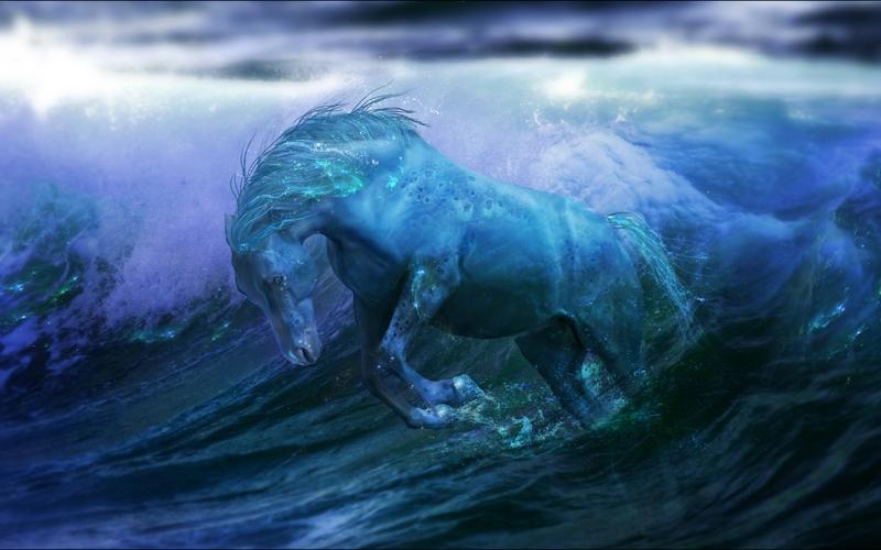 Seahorse by drastique44