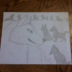 Wolf Pack by SUPERWOLF10