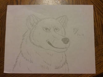 Polar Bear by SUPERWOLF10