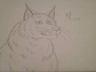 Bobcat by SUPERWOLF10