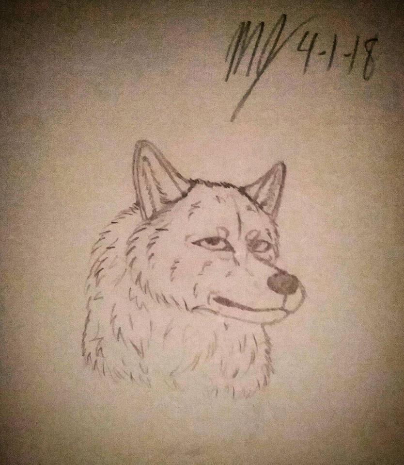 Wolf Sketch by SUPERWOLF10