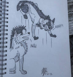 Crazy Burney  by SUPERWOLF10