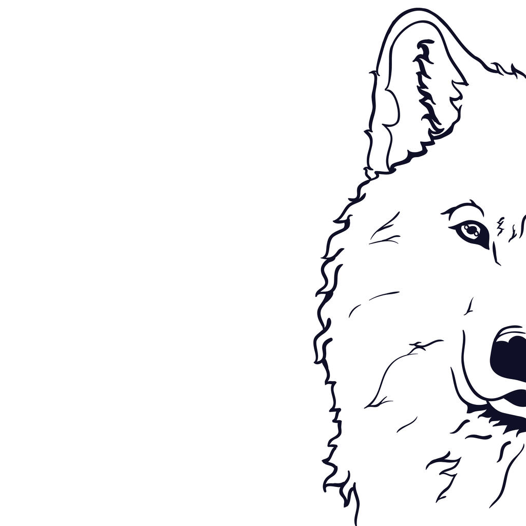 28 Collection of Half Wolf Face Drawing  High quality