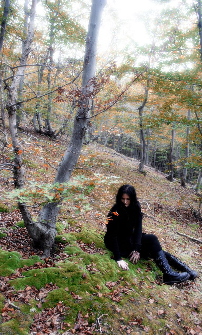 Forest by NekromanCica