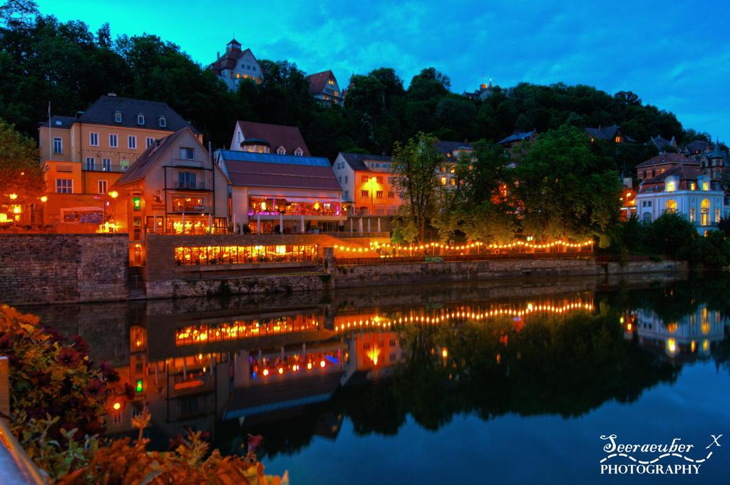Neckar bridge view by Seeraeuber