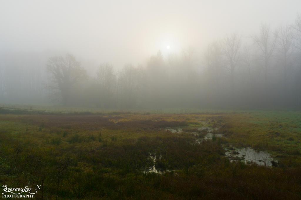 Morning mist by Seeraeuber