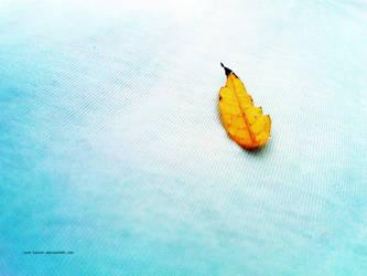 Cool Fall by Last-Savior