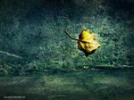 Alone Fall