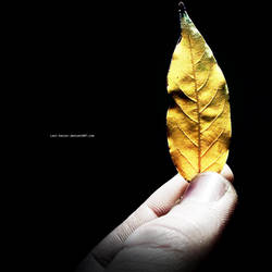 Feel Autumn by Last-Savior