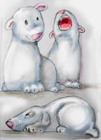 Canadian Ice Bears by Chaos-Of-Fubuki