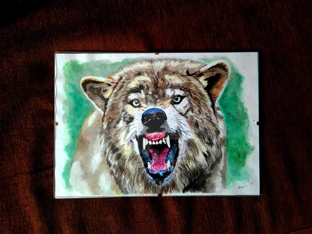 Aquarelle training - Wolf by Adriankaa