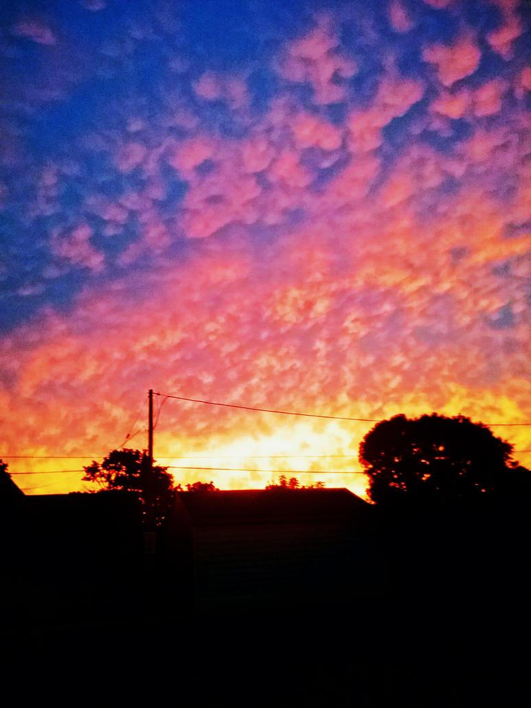 Sunset by Teddybear200