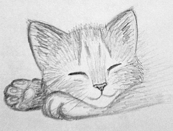 how to draw a kitten for beginners