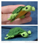 Baby Sea Turte