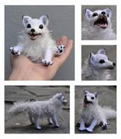 Remi the white fox by Kridah