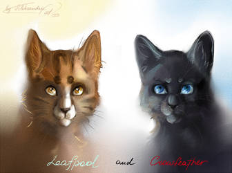 Leafpool and Crowfeather by Aleksandra-Cat