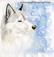 Forever winter by kotenokgaff