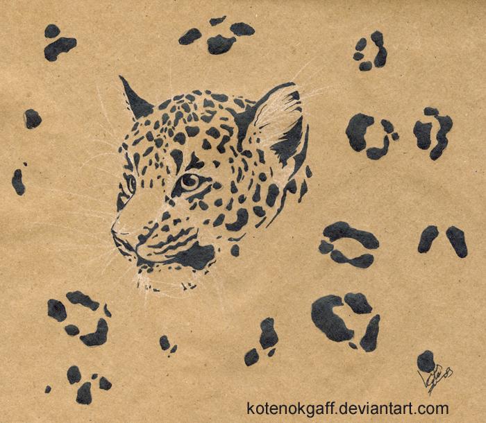 Only spots by kotenokgaff