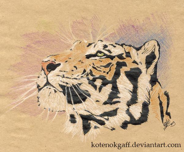 Stripes by kotenokgaff