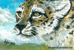 African symbol - cheetah by kotenokgaff