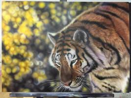 Sunlight tiger