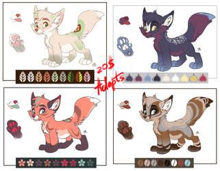 Kote Foxies