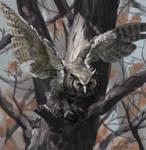 DeathlessOwl v1