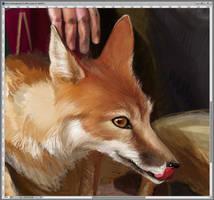 Fox by Feael