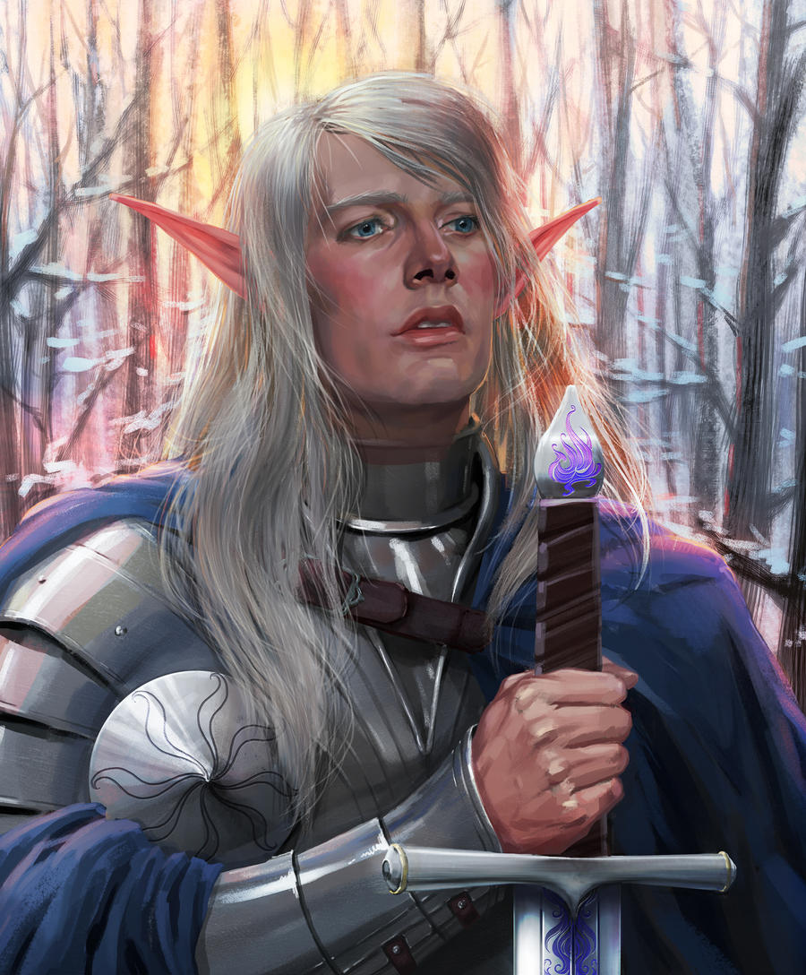 Elf-paladin. Comission work. by Feael