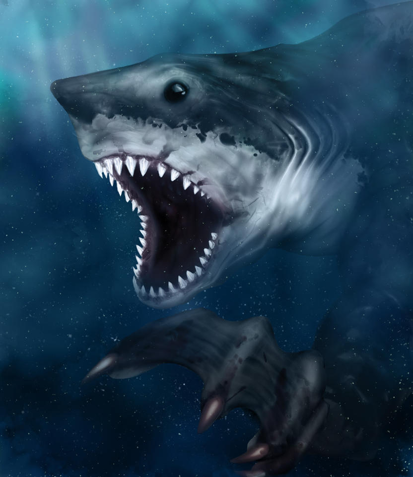 Shark hybrid drawing - photo#23