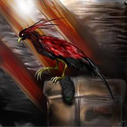 Sock-stealing bird by hwango