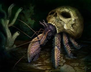Hermit Crab in Skull by hwango