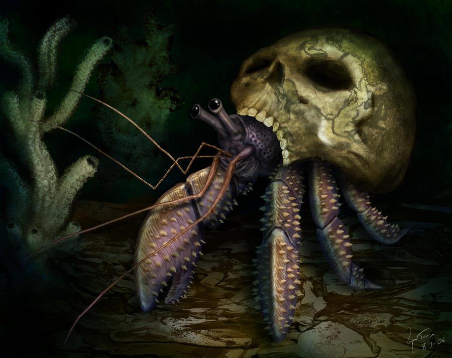 hermit_crab_in_skull_by_hwango.jpg