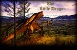 The Little Dragon Cover