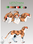 [Commission] Leto Reference Sheet