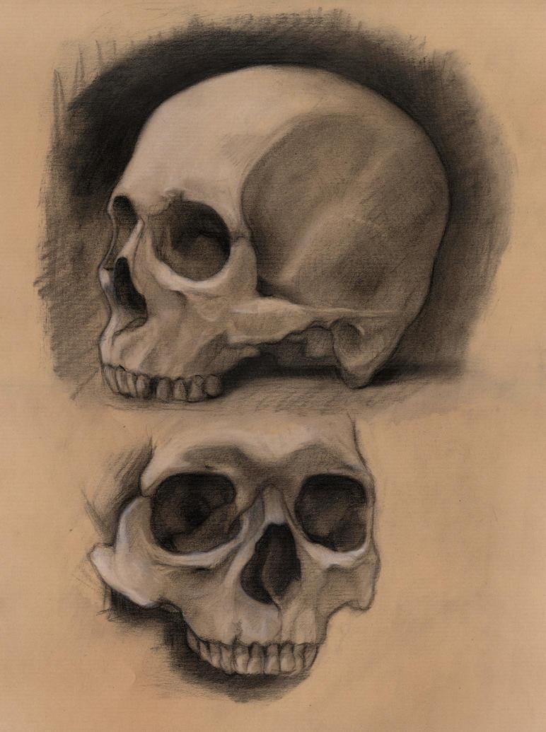 Skull by A-Acaso-Z