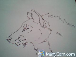 Wolfeh! by Ciriandbuzz