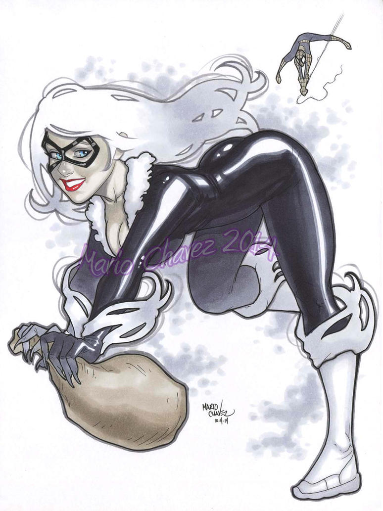 Spidey Black Cat by MarioChavez