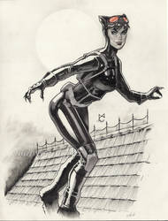 Catwoman by MarioChavez
