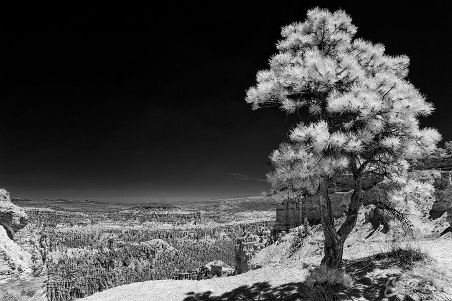 Rim Trail II by eprowe
