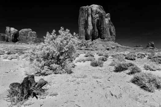 Somewhere in Monument Valley