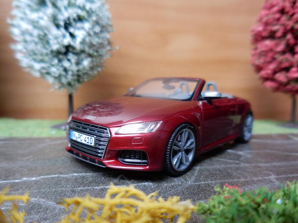 Audi TTS Roadster  by modelcargallery98