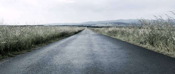 Far way home